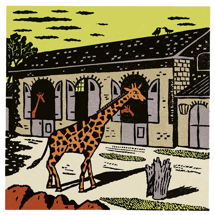 linocut, giraffe, printmaking, bold, simple, playful, animal, building, outdoors, nature, zoo, christopher brown, chris brown, illustrator, illustration, decorative, traditional, heritage