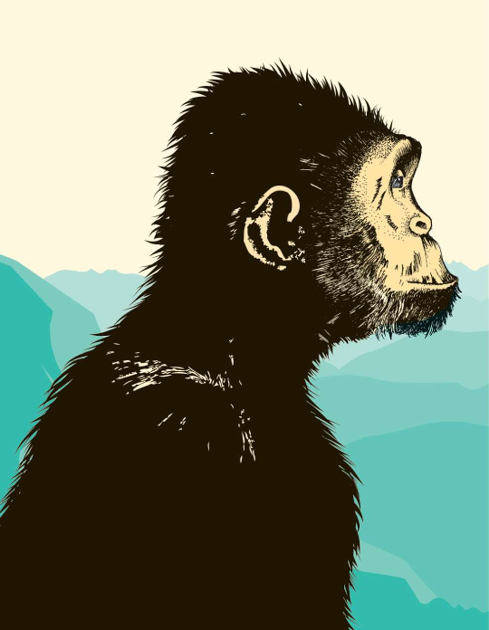 Valentina  D'Efilippo, Digital illustration of a monkey