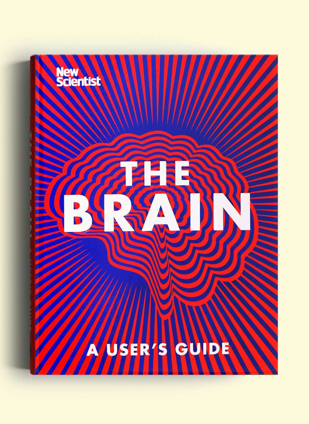 Valentina  D'Efilippo, New scientist book cover - graphic illustration of a brain
