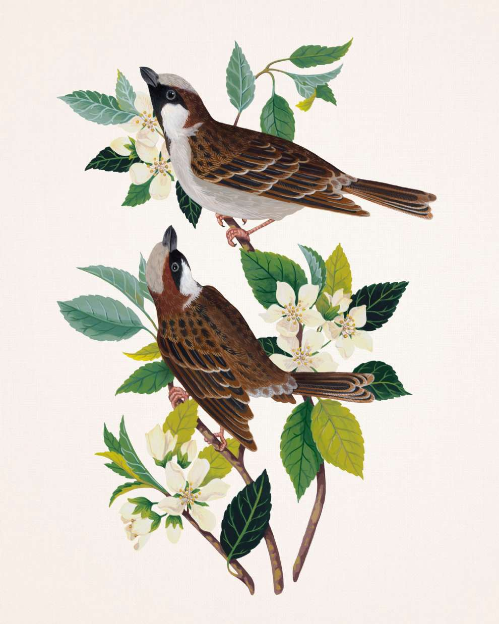 Charlotte Day, Delicately handpainted birds on branches with white flowers