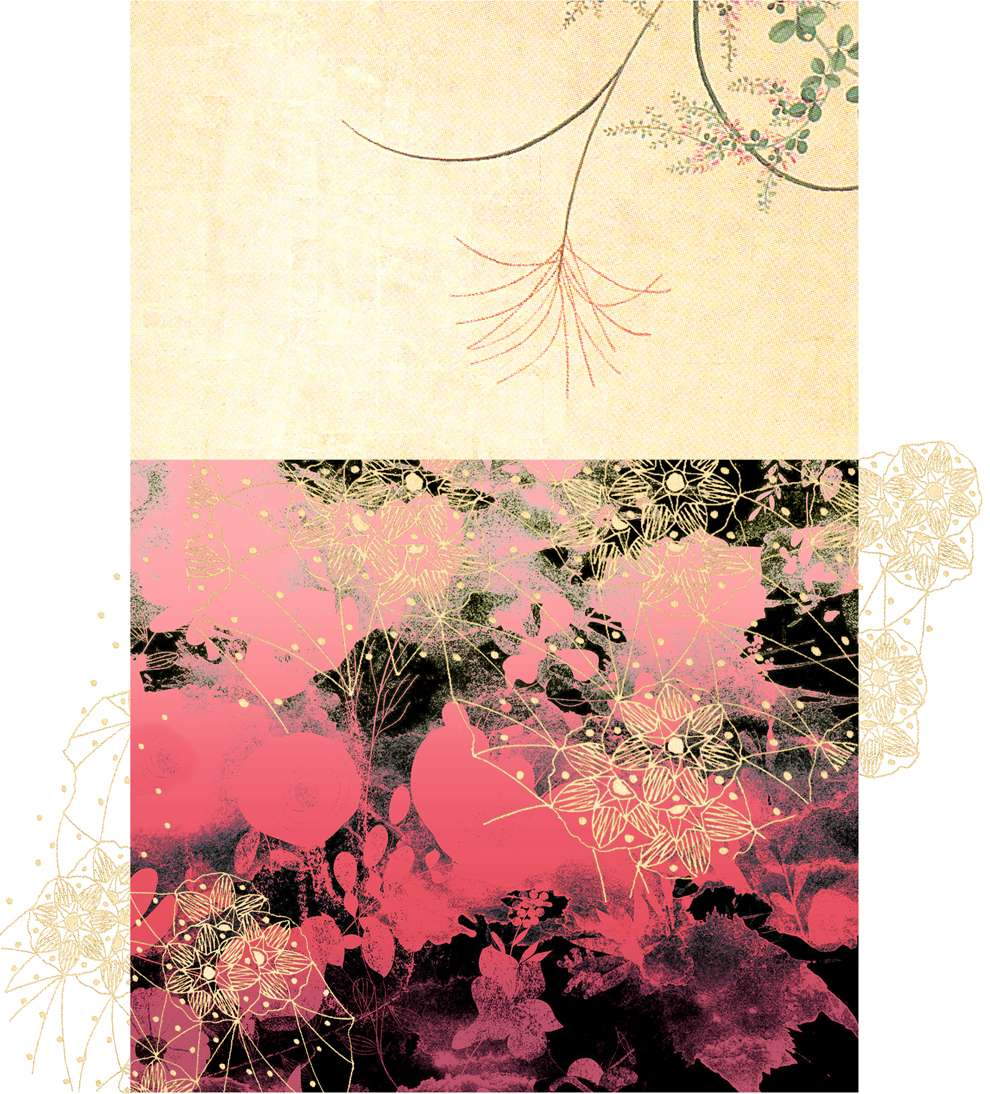 Jackie Parsons, DIgital photo collage of a landscape with botanical elements