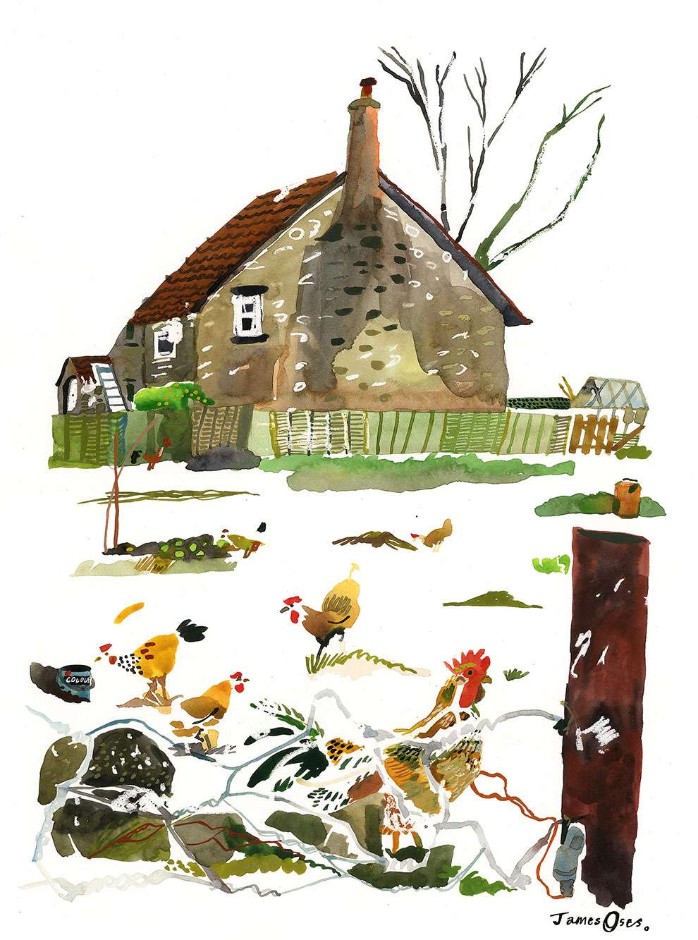 James Oses, Hand painted illustration fo a chicken farm