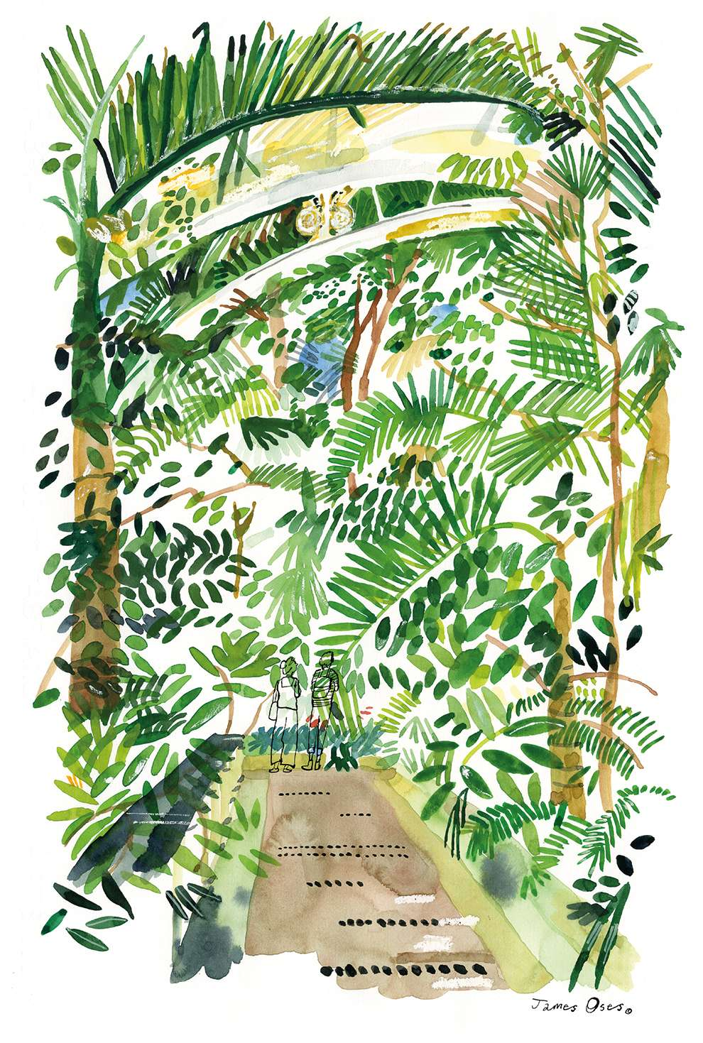 James Oses, Watercolour illustration of London Kew gardens