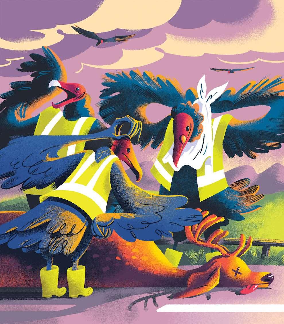 Jan Bielecki, Textural humoristic illustration of vulture dressed up as road-man