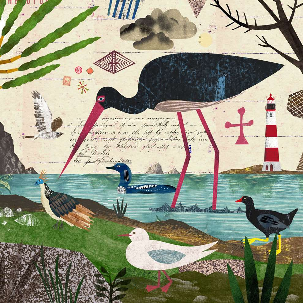 Martin Haake, Mix media layered illustration of wildlife and birds on a lake using collage.