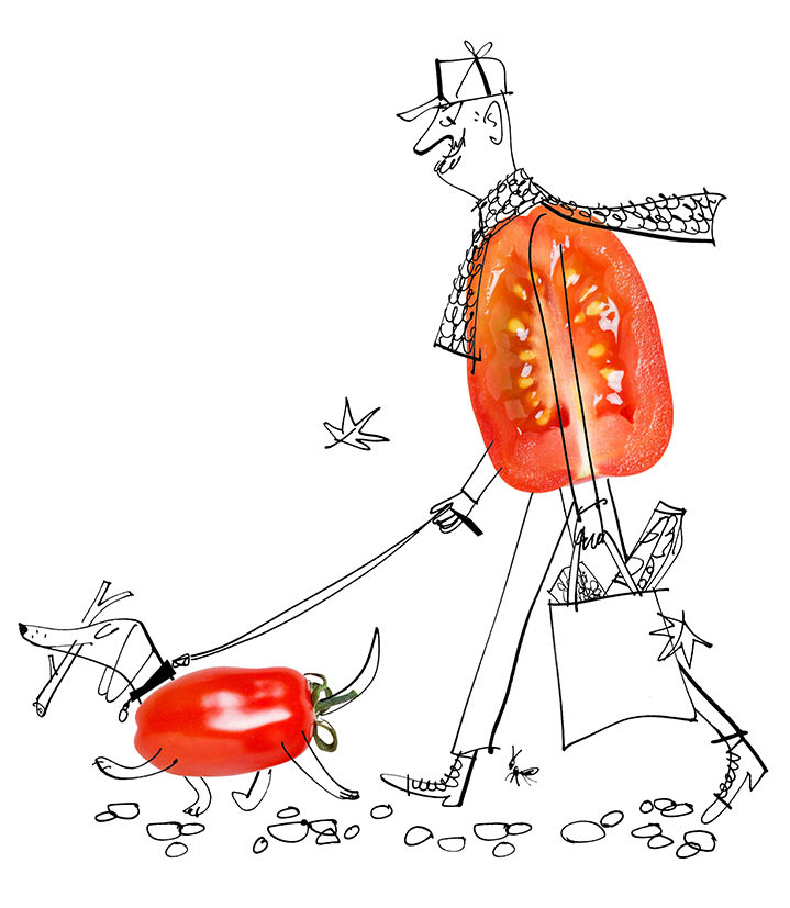 MH Jeeves, MH Jeeves photomontage tomato man and dog illustration