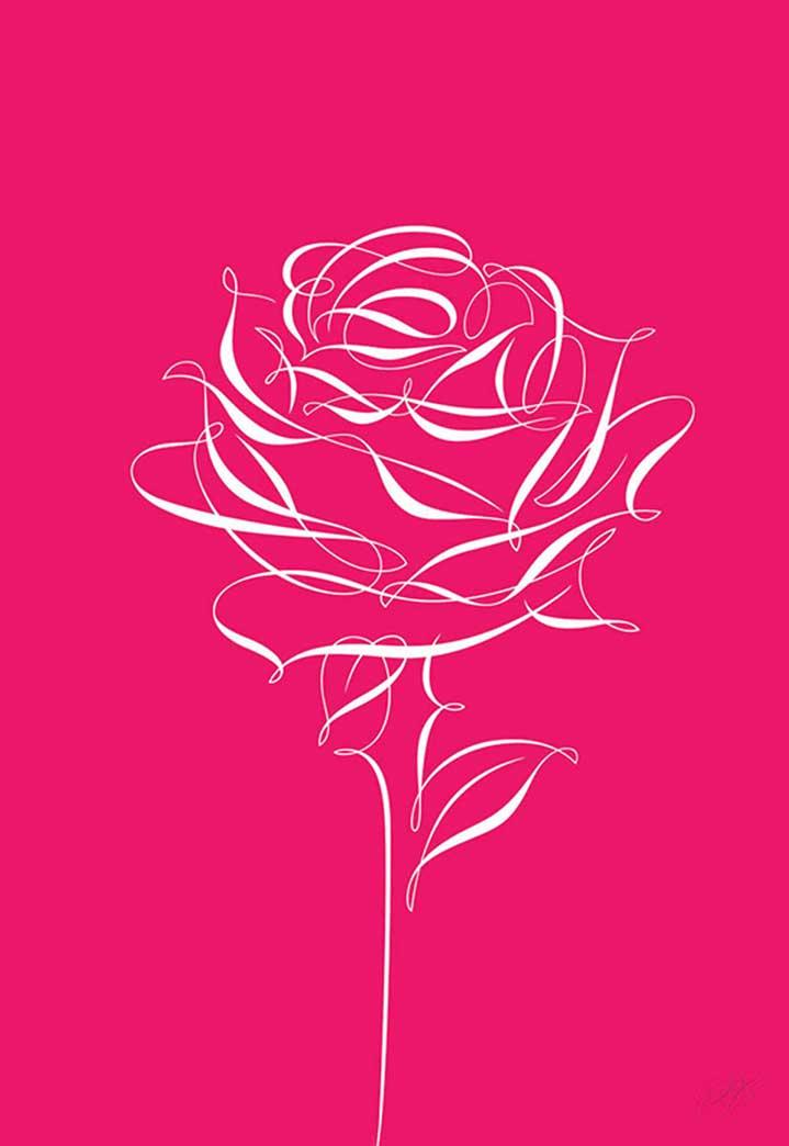 Peter Horridge, Peter Horridge calligraphy line drawn rose