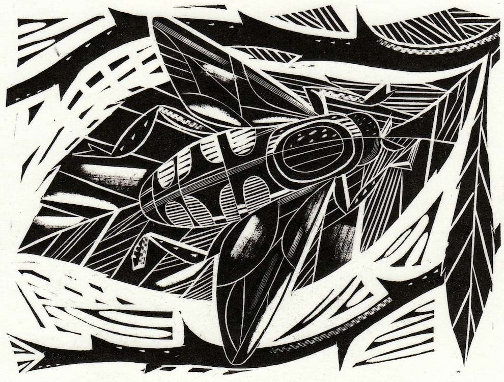 Jonathan Gibbs, Black and white woodcut illustration of a bee
