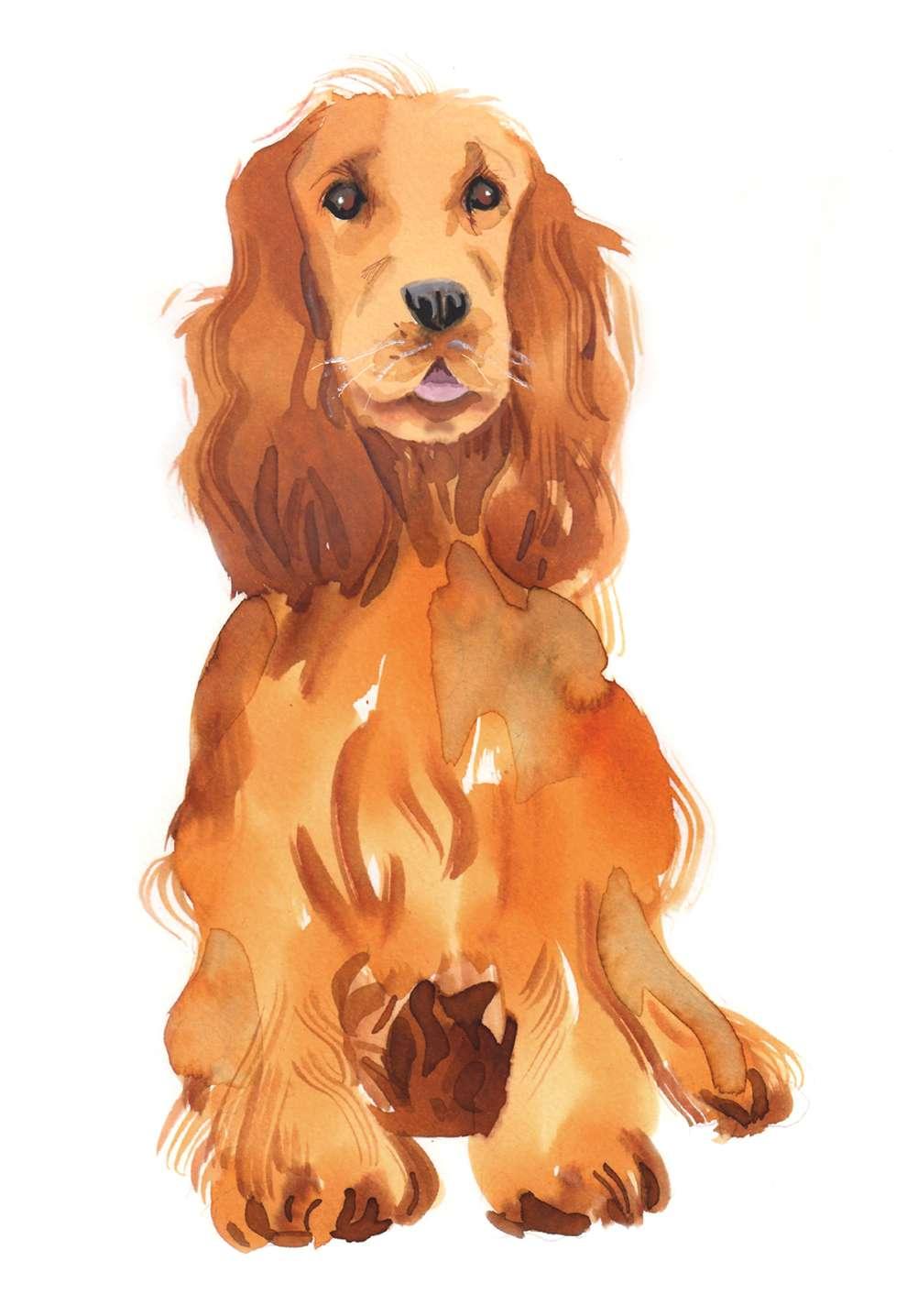 Lesley Buckingham, Handpainted dog