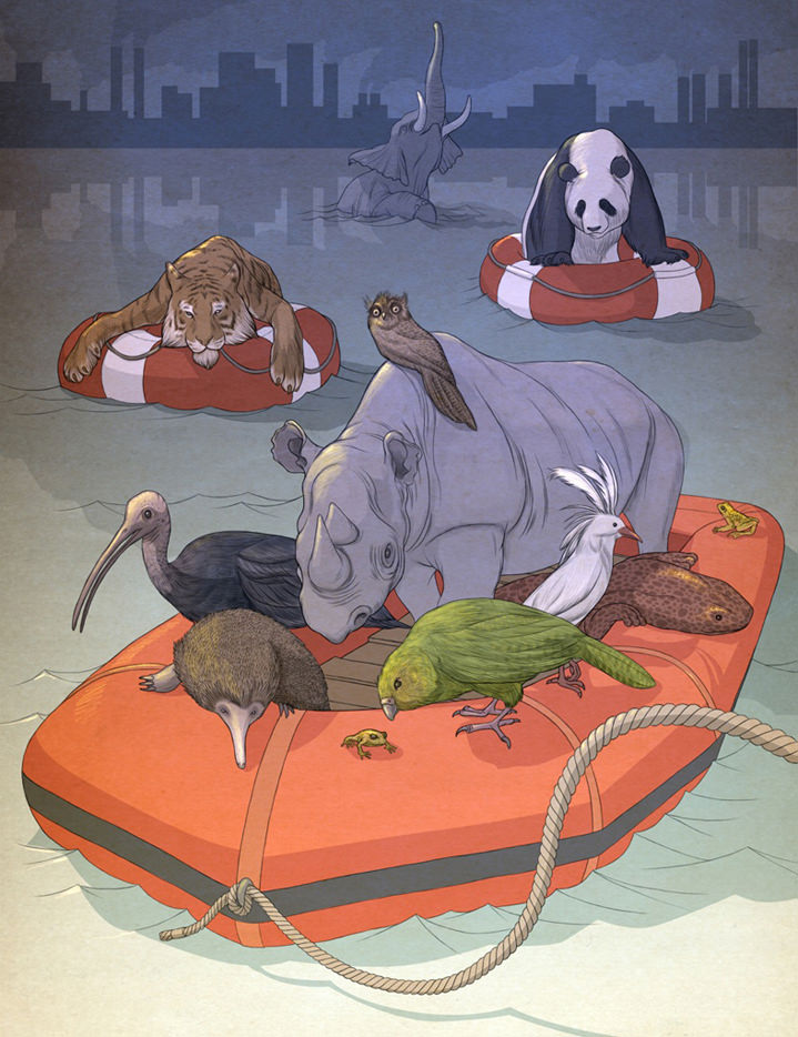 Richard Wilkinson, Fantasy style hand drawn and digital illustration of animals in a life raft created for an editorial magazine commission about endangered species. Featuring a rhino, panda, tiger, elephant, and birds.