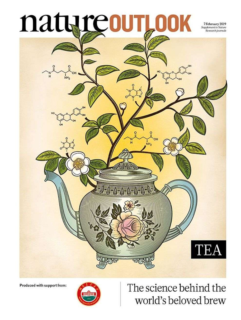 Susan Burghart, Magazine cover - digital illustration of a tea pot