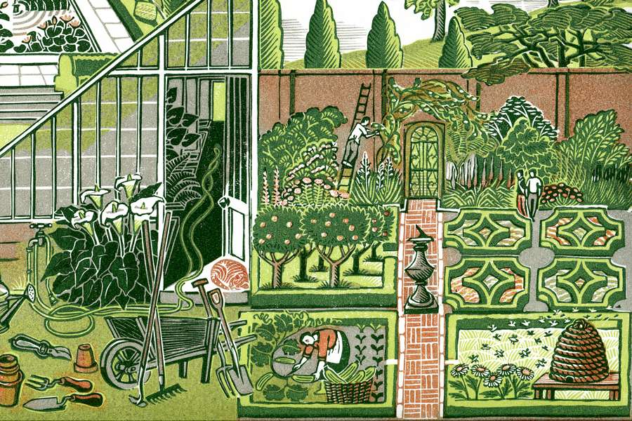 Clare Melinsky, Beautifully detailed linocut illustration of a garden with different flowers and tree species