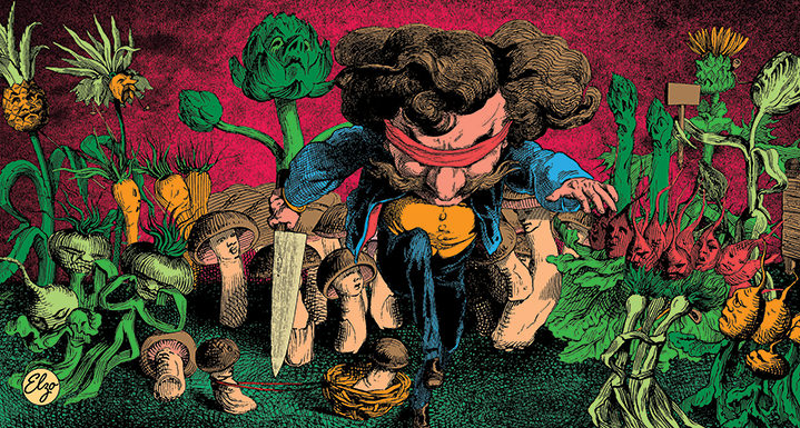 Elzo Durt, Elzo Durt Psychedelic Illustration of a small blindfolded man amongst vegetables, each with their own face.