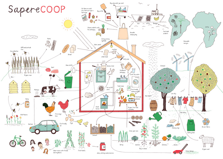 Harriet Russell, Line art hand drawn spot illustrations in an infographic style
