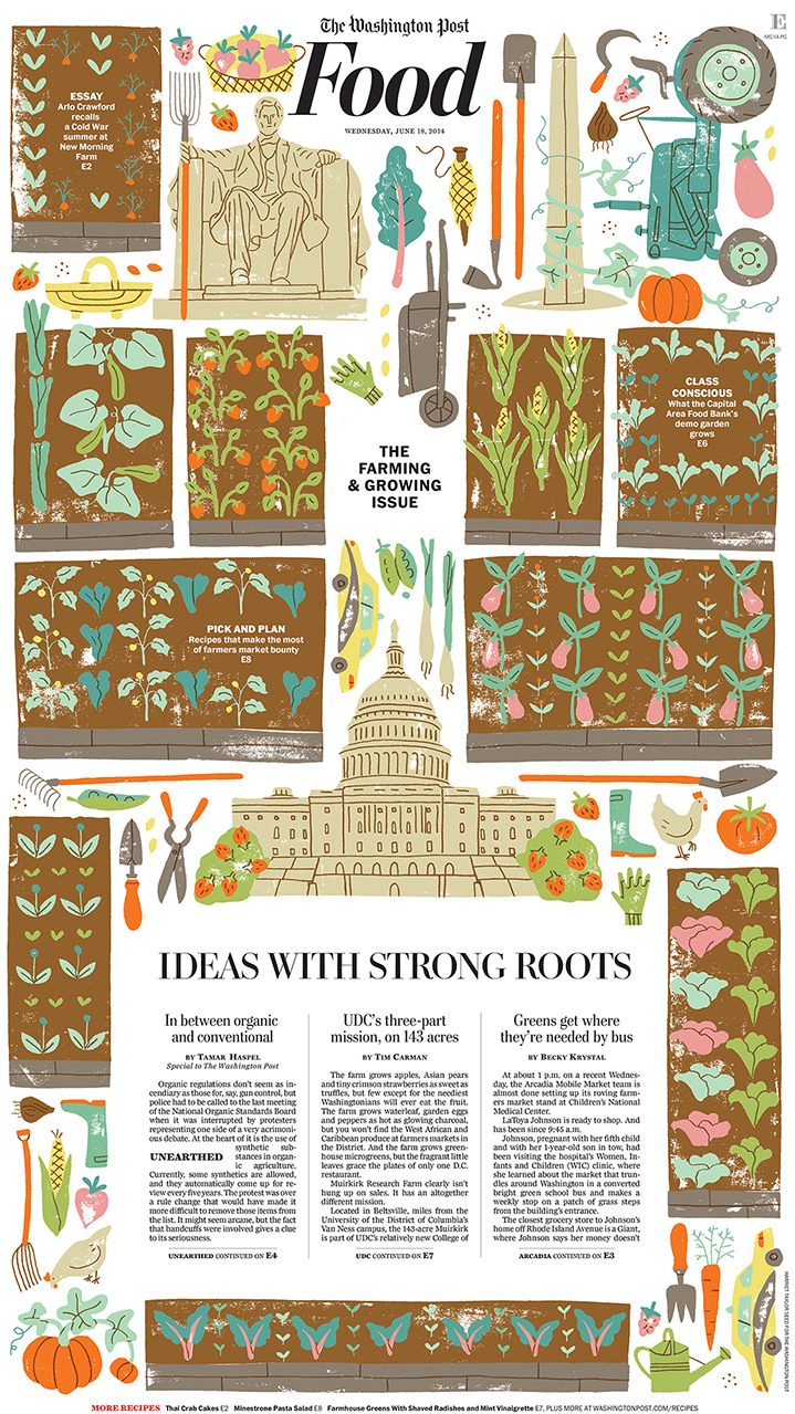 Harriet Seed, editorial illustration for the washington post. Garden seen from above with icon elements in a pattern. American Washington building Capital.