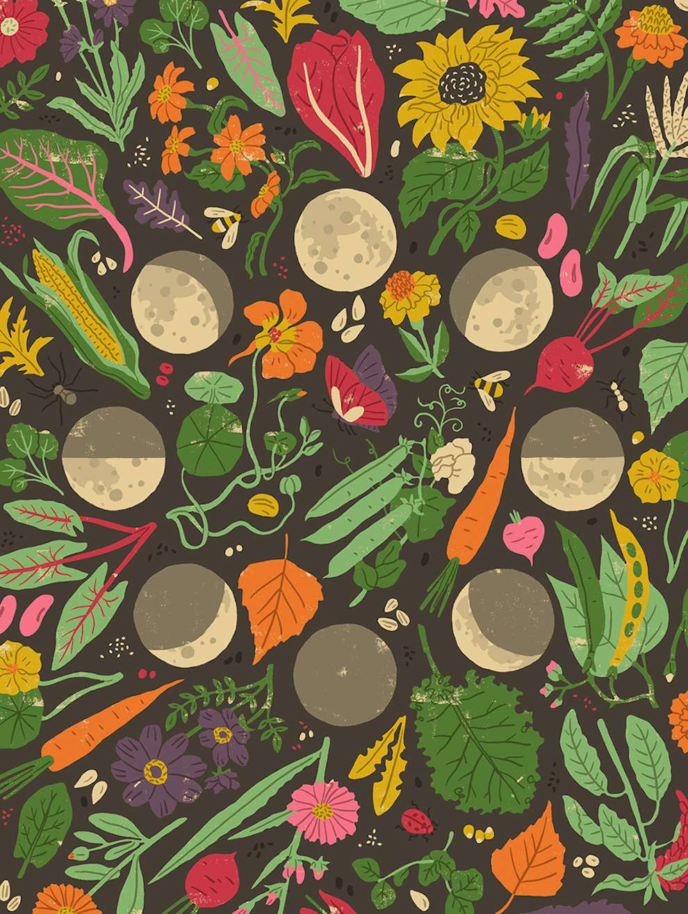 Harriet Taylor Seed, Vegetable pattern