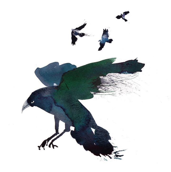 Lesley Buckingham, Handpainted crow