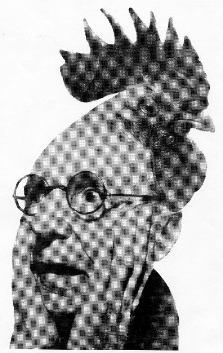 lou beach, illustration, collage, characters, abstract, illustrator, vintage, retro, obscure, unusual, black and white, head, chicken, glasses