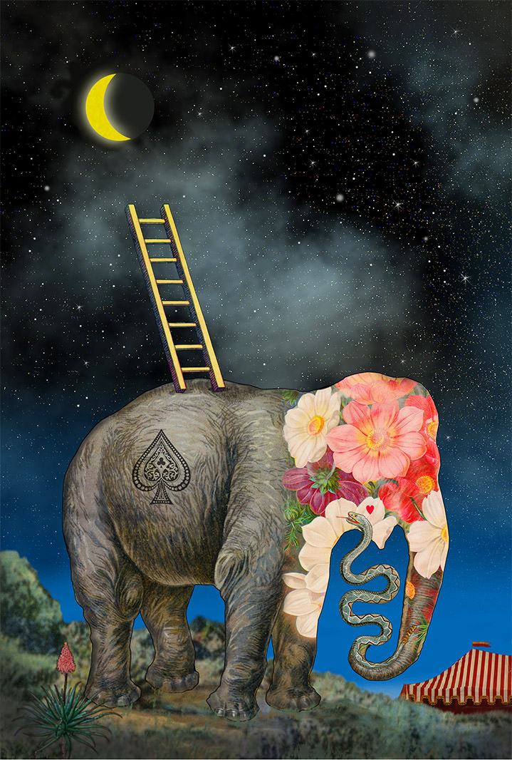 lou beach, illustration, collage, characters, abstract, illustrator, vintage, retro, obscure, unusual, elephant, moon, nightime, ladder, conceptual