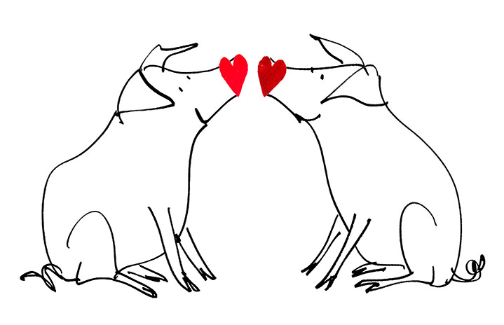 MH Jeeves, MH Jeeves pigs in love sketch illustration