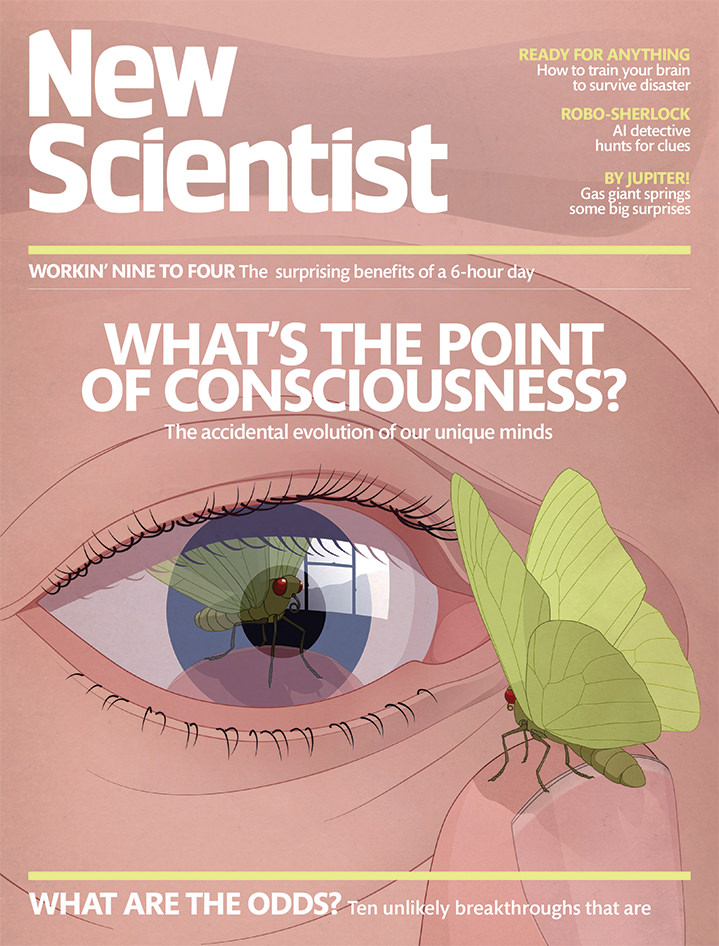 Richard Wilkinson, Magazine cover by Richard Wilkinson of a close up eye looking at a butterfly in a realistic style