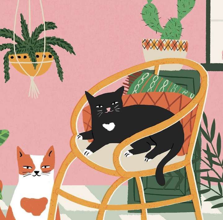 Ruby  Taylor, Bold and textural illustration