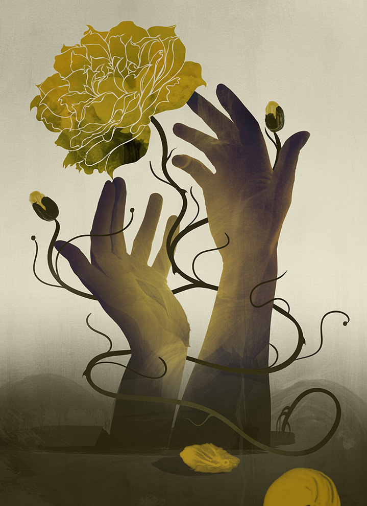 Darren Hopes, Darren Hopes surreal illustration of hands with a flower