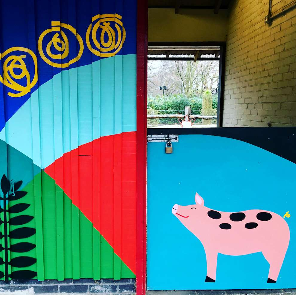 Margaux Carpentier, Hand-painted pig on a farm with vibrant and colourful background